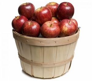 yabloki 300x265 Ведро с яблоками